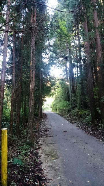 20141029林道小野線DSC_0036.jpg