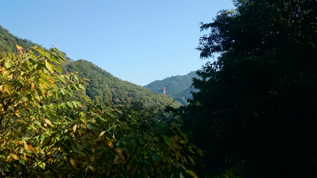 20141029林道小野線DSC_0151.jpg