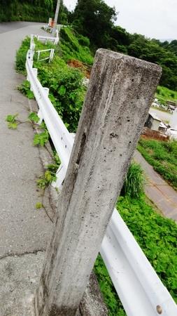 20130703藤野 牧野 06.jpg