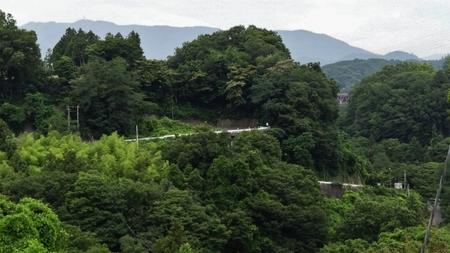 20130703藤野 牧野 07.jpg