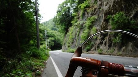 20130703藤野 牧野 09.jpg