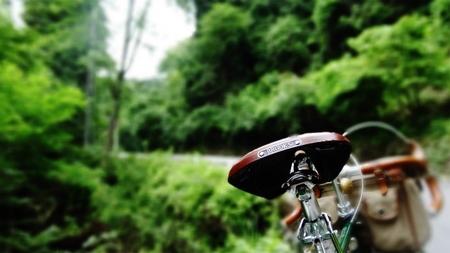 20130703藤野 牧野 19.jpg