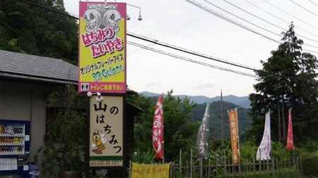 20130703藤野 牧野 20.jpg