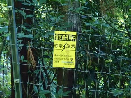 20130918宮ケ瀬P9180927.jpg