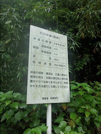 20131002城山 穴川林道2.jpg