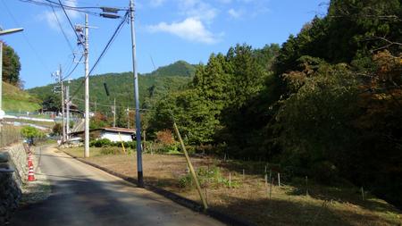 20131106綱子DSC06285.jpg