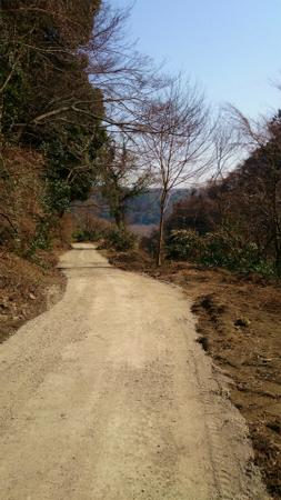 20140312寸沢嵐津久井湖小倉林道29.jpg