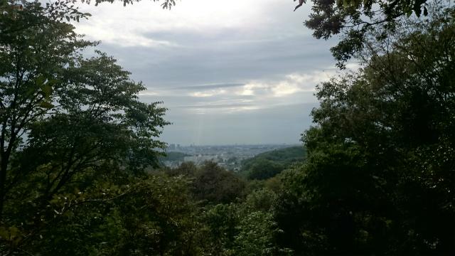 20141015 城山 雨降 大戸 相原DSC_0095.jpg