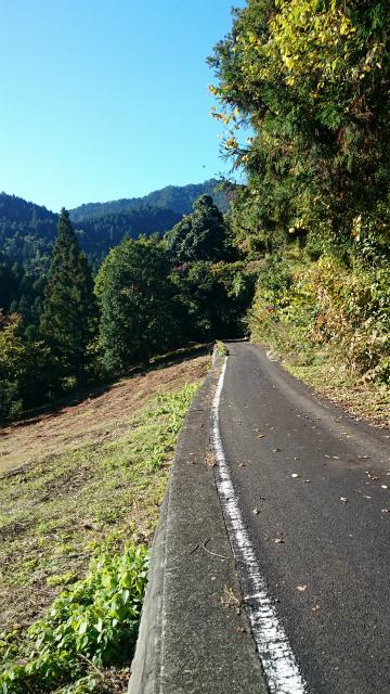 20141029林道小野線DSC_0046.jpg