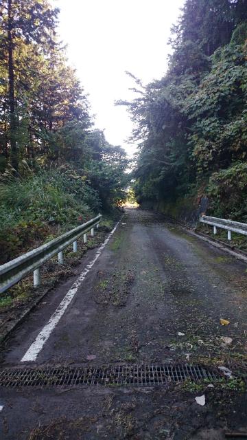 20141029林道小野線DSC_0081.jpg